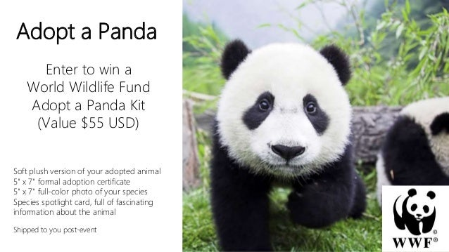 Adopt a Panda Enter to win a World Wildlife Fund Adopt a Panda Kit (Value $55 USD) Soft plush version of your adopted anim...