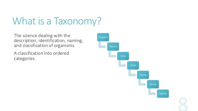sharepoint taxonomy introduction