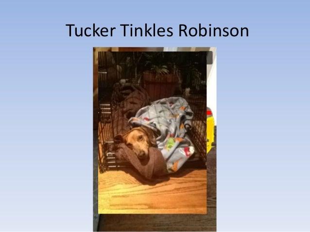 Tucker Tinkles Robinson