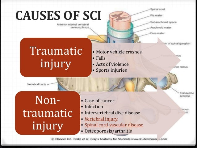 traumatic and non traumatic brain injuries essay Salute vets home resources  and mitigation in capital and non-capital  and as chronic sequelae and outcomes of repetitive traumatic brain injuries.
