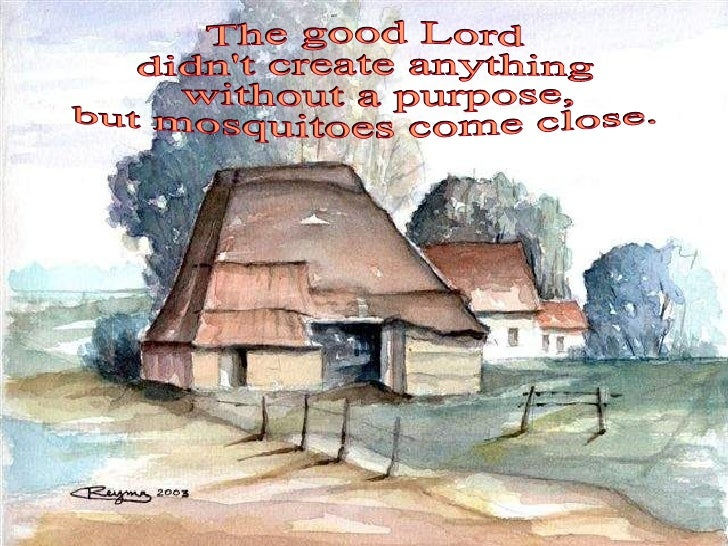 The good Lord  didn't create anything without a purpose,  but mosquitoes come close.