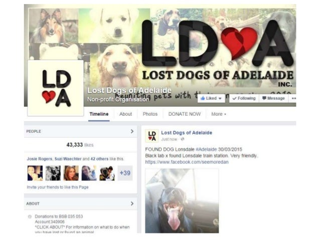 One of my favourite stories of sharing in Adelaide is Lost Dogs, which I founded in late 2010 and which has been built by ...