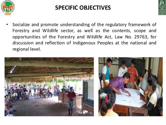"""a discussion on community participation in forest management Community based forest and livelihood management in  active citizen participation in the design process  groups in community management"""" discussion."""
