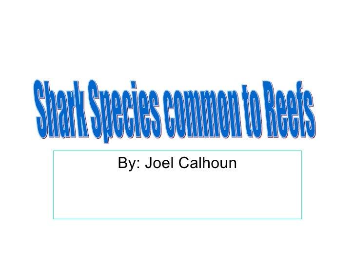 By: Joel Calhoun Shark Species common to Reefs