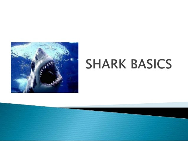  Sharks are cartilaginous fish ◦ Meaning their skeleton is made mainly of cartilage  Belong to the class Chondrichthyes ...