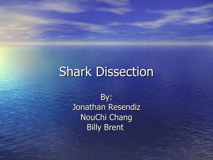 Shark Dissection By: Jonathan Resendiz NouChi Chang Billy Brent