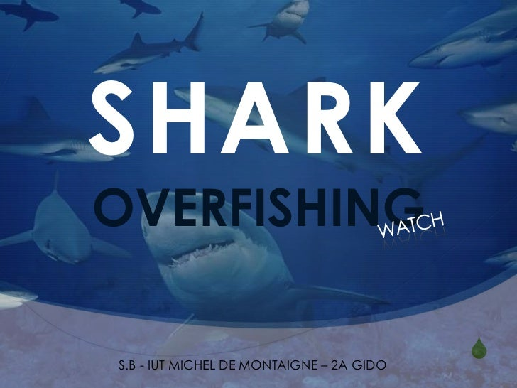 SHARKOVERFISHINGS.B - IUT MICHEL DE MONTAIGNE – 2A GIDO                                          S