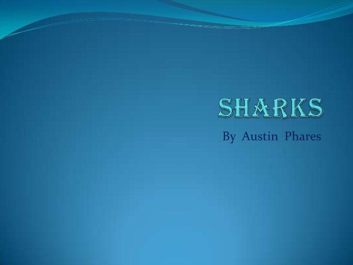 Sharks<br />By  Austin  Phares<br />