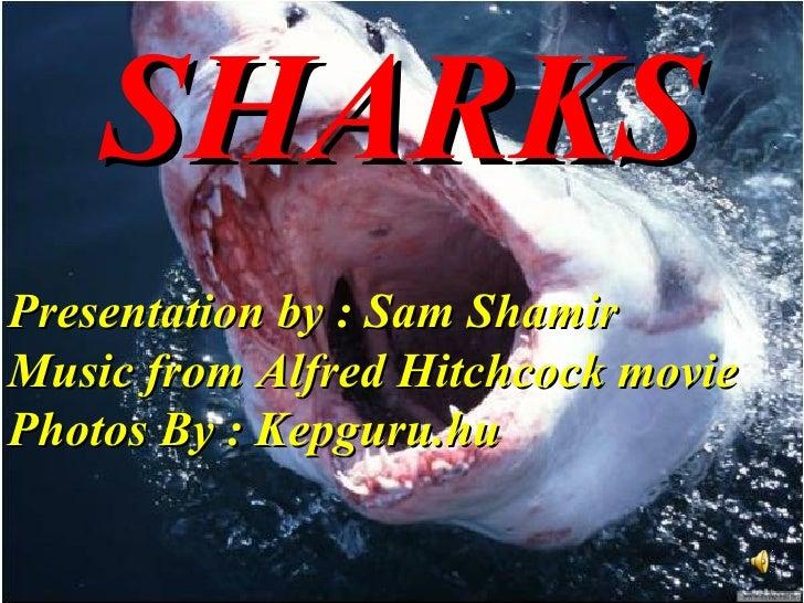 SHARKS   Presentation by : Sam Shamir Music from Alfred Hitchcock movie Photos By : Kepguru.hu