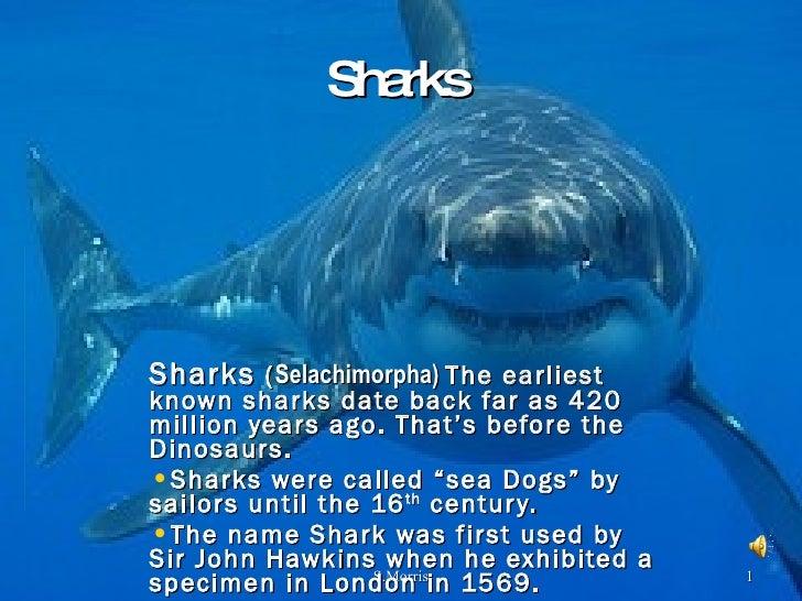 Sharks <ul><li>Sharks  ( Selachimorpha)  The earliest known sharks date back far as 420 million years ago. That's before t...