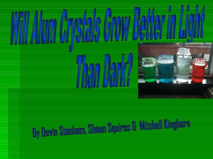Will Alum Crystals Grow Better in Light  Than Dark? By Devin Stonham, Shaun Squires &  Mitchell Kinghorn