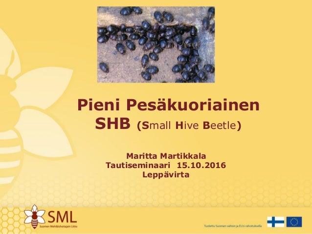 Pieni Pesäkuoriainen SHB (Small Hive Beetle) Maritta Martikkala Tautiseminaari 15.10.2016 Leppävirta