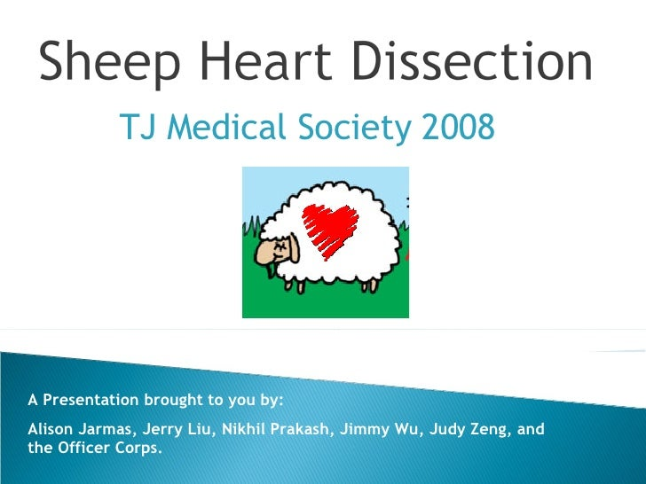 TJ Medical Society 2008 A Presentation brought to you by:  Alison Jarmas, Jerry Liu, Nikhil Prakash, Jimmy Wu, Judy Zeng, ...