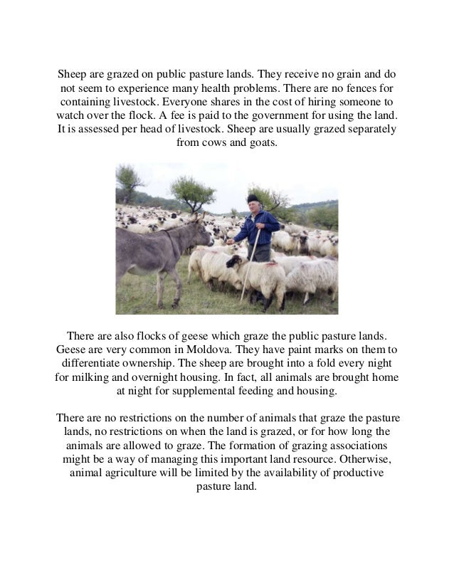sheep and goat production pdf