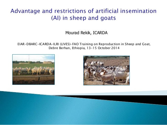 EIAR-DBARC-ICARDA-ILRI (LIVES)-FAO Training on Reproduction in Sheep and Goat, Debre Berhan, Ethiopia, 13-15 October 2014 ...