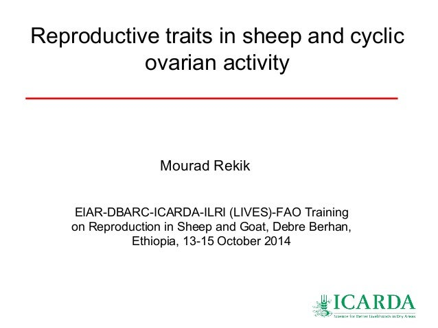 Reproductive Traits In Sheep And Cyclic Ovarian Activity