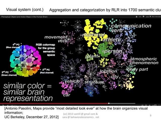 "Visual system (cont.)      Aggregation and categorization by RLR into 1700 semantic clus[Antonio Pasolini, Maps provide ""m..."