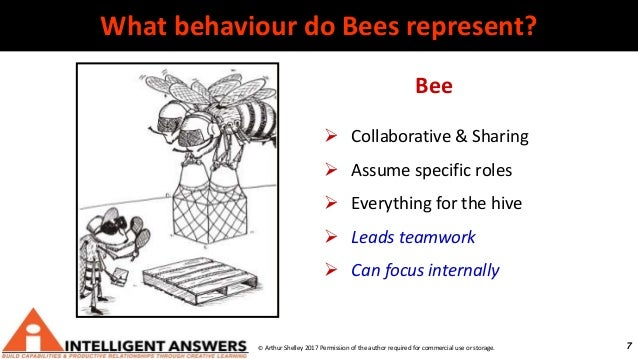 7 Bee  Collaborative & Sharing  Assume specific roles  Everything for the hive  Leads teamwork  Can focus internally ...