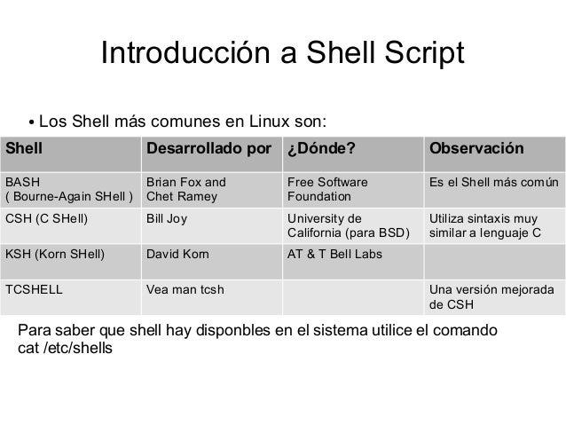 el script de bash shell pdf