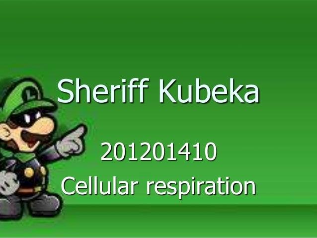 Sheriff Kubeka 201201410 Cellular respiration