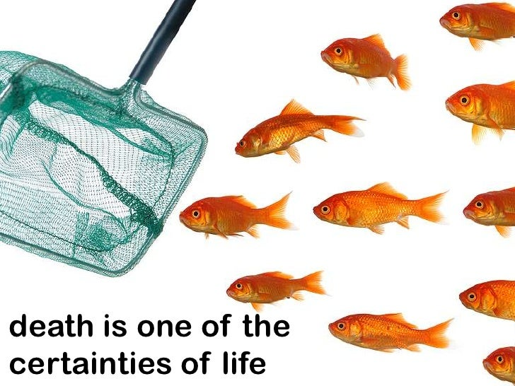 death is one of thecertainties of life