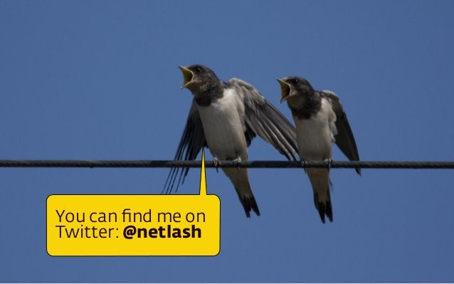You can find me on Twitter: @netlash