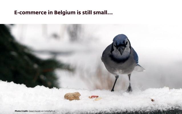 E-commerce in Belgium is still small... Photo Credit: Dawn Huczek via Compfight cc