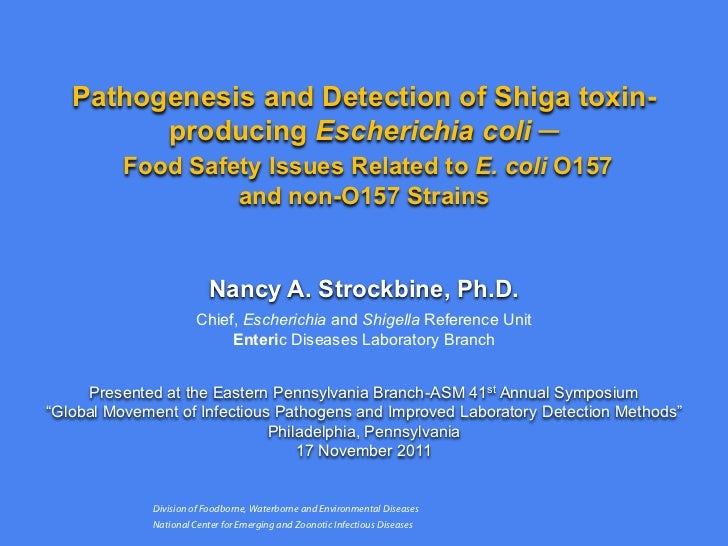 Pathogenesis and Detection of Shiga toxin-         producing Escherichia coli ─          Food Safety Issues Related to E. ...