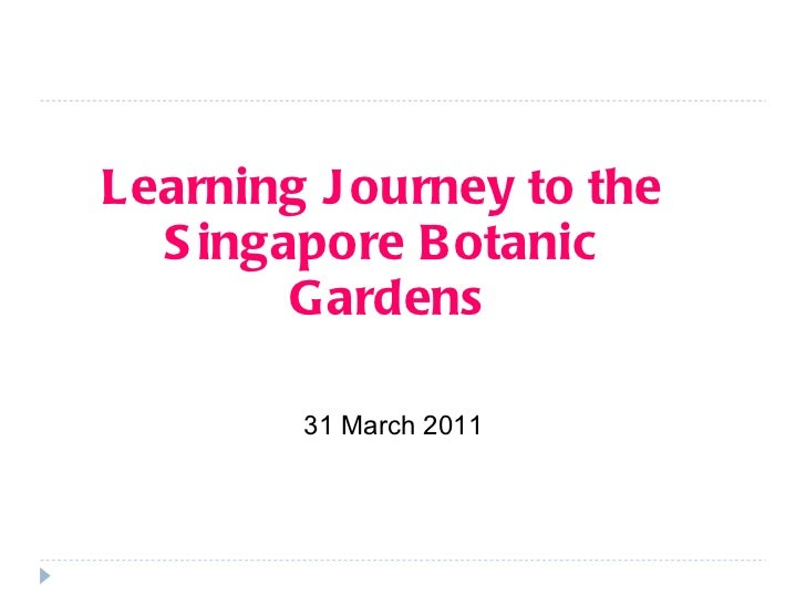 Learning Journey to the  Singapore Botanic  Gardens 31 March 2011