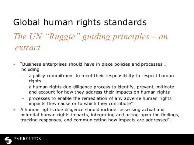 un guiding principles business human rights