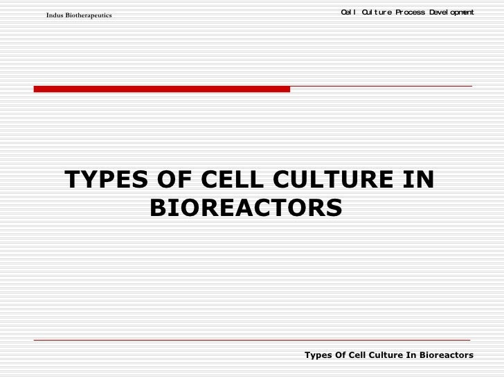 TYPES OF CELL CULTURE IN BIOREACTORS