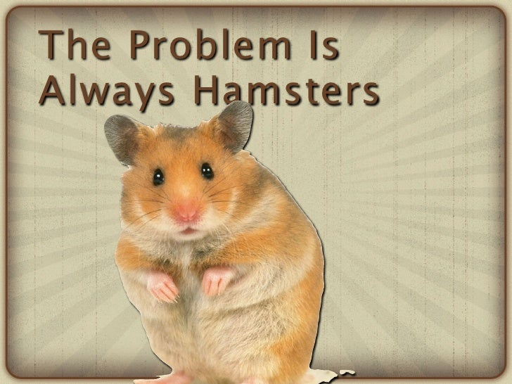 The Problem IsAlways Hamsters