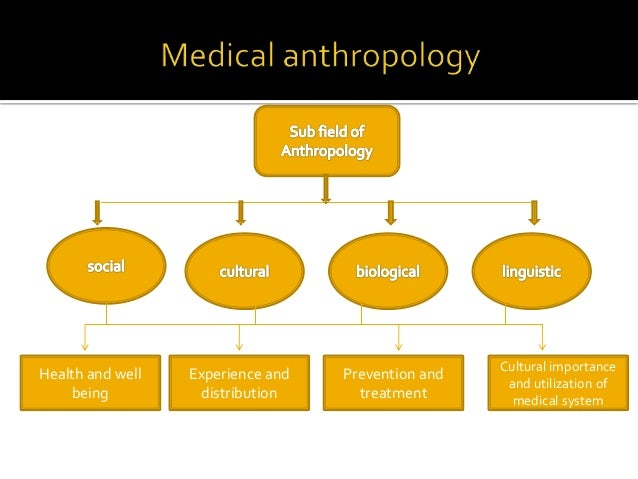 anthropology social relationships Anthropology is the study of including physiology and evolutionary origins while sociology focuses on social relationships anthropology vs sociology.