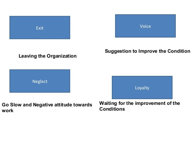 exit voice loyalty neglect model Org behavior ch 4 - free download as pdf file (pdf), text file (txt) the exit-voice-loyalty-neglect model states that some employees respond to their job.
