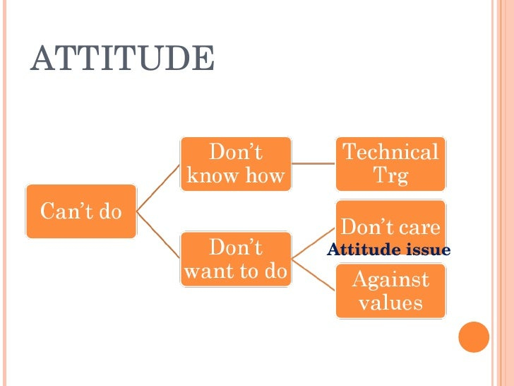 ATTITUDE                Attitudeissue