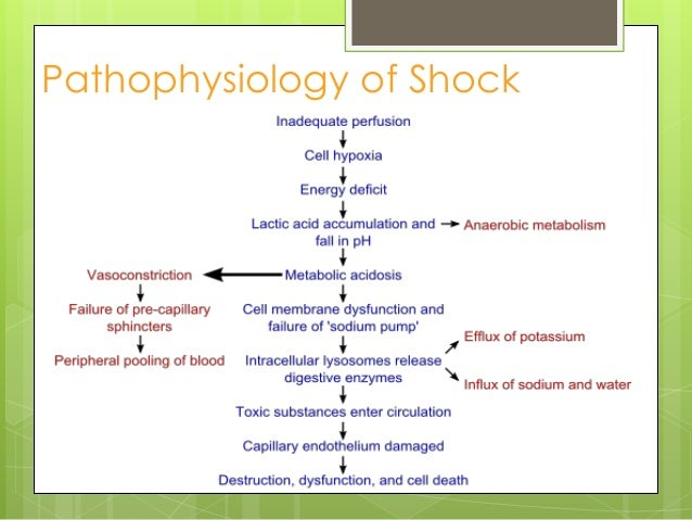 Shock Pathophysiology Types Amp Management