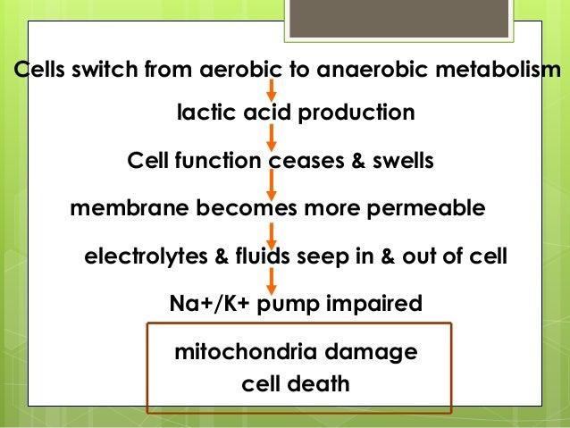 Hypovolemic Shock and Fluid Resuscitation