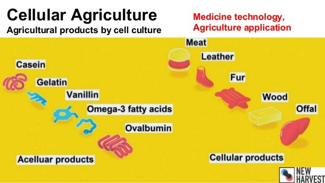 Cellular Agriculture Agricultural products by cell culture Medicine technology, Agriculture application