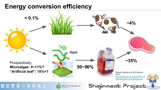 "Energy conversion efficiency < 0.1% Prospectively, Microalgae: 4~11%? ""Artificial leaf"": 10%+? ~4% ~35% 50~90% Shepon, Esc..."