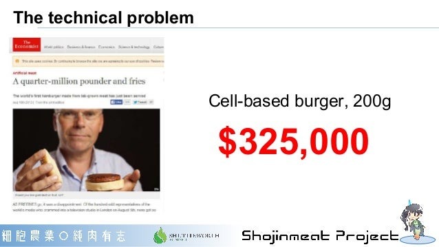 The technical problem $325,000 Cell-based burger, 200g