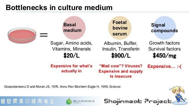 Bottlenecks in culture medium Gospodarowicz D and Moran JS, 1976, Annu Rev Biochem Eagle H, 1959, Science Sugar, Amino aci...