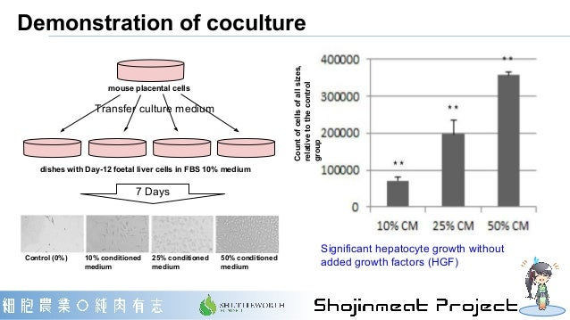 Demonstration of coculture Significant hepatocyte growth without added growth factors (HGF)Control (0%) 10% conditioned me...