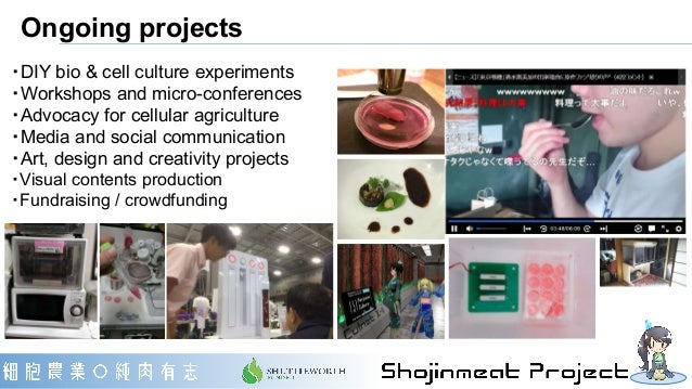 Ongoing projects ・DIY bio & cell culture experiments ・Workshops and micro-conferences ・Advocacy for cellular agriculture ・...