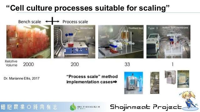 "Dr. Marianne Ellis, 2017 ""Process scale"" method implementation cases⇒ ""Cell culture processes suitable for scaling"""