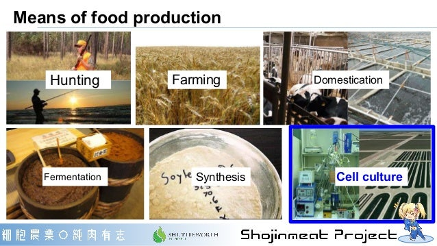 Means of food production Hunting Farming Domestication Fermentation Synthesis Cell culture