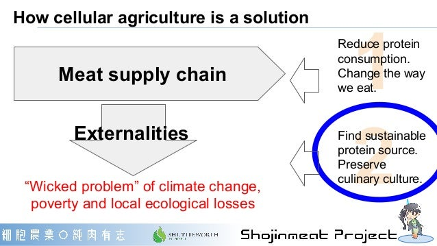 How cellular agriculture is a solution 1 2 Reduce protein consumption. Change the way we eat. Find sustainable protein sou...
