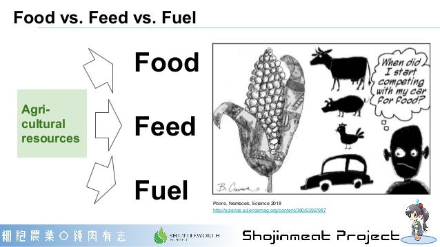 Food vs. Feed vs. Fuel Agri- cultural resources Food Feed Fuel Poore, Nemecek, Science 2018 http://science.sciencemag.org/...
