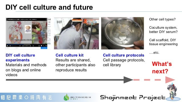 DIY cell culture and future Other cell types? Coculture system, better DIY serum? Cell scaffold, DIY tissue engineering …....