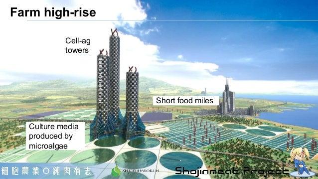 Culture media produced by microalgae Short food miles Farm high-rise Cell-ag towers