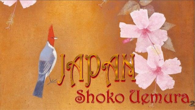 ShokoUemura(1902-2001)HibiscusandaCardinal ShohakuArtMuseum